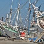 Bugis Pinisi schooners Makassar
