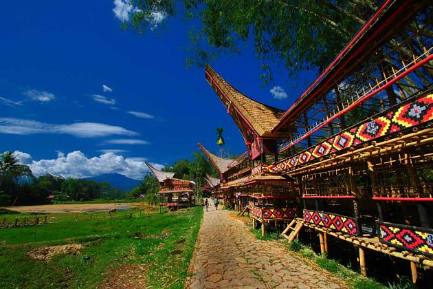 Palopo Tour to Toraja