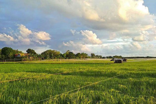 Lakkang village
