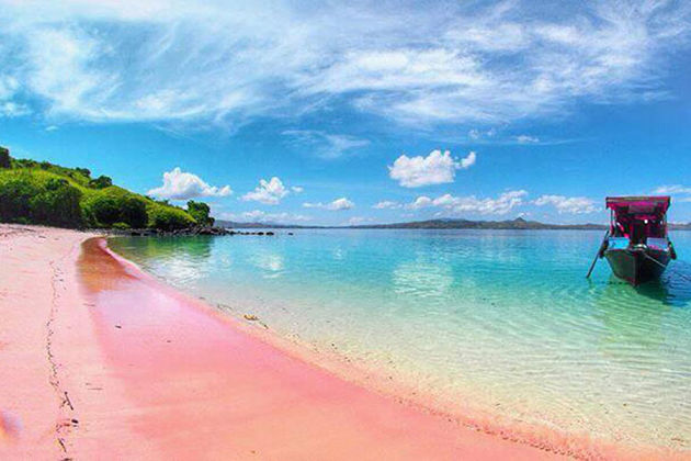 Pink Beack - Komodo island shore excursions