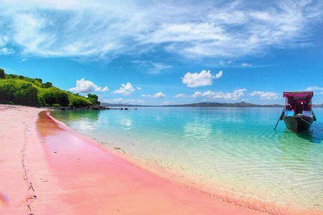 Pink Beack - Komodo island shore excursions