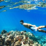 Scuba Diving at Komodo Island