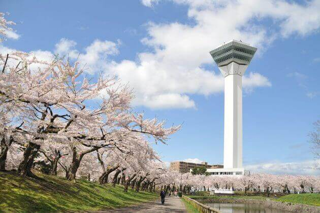 Goryokaku-Tower-in-Hakodate-shore-excursions