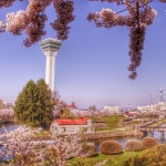Spring Day in Hakodate