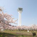 Goryokaku Tower & Park