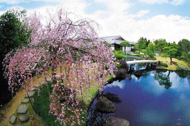 Kokoen Garden - Kobe shore excursions
