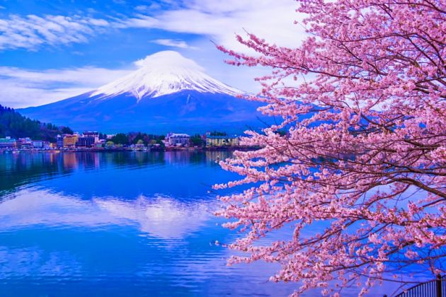 Mount Fuji - Sakura Hanami Spots in Japan