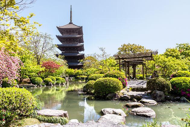Makino Botanical Garden - Kochi Japan shore excursions