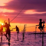 stilt fishermen - Colombo shore excursions