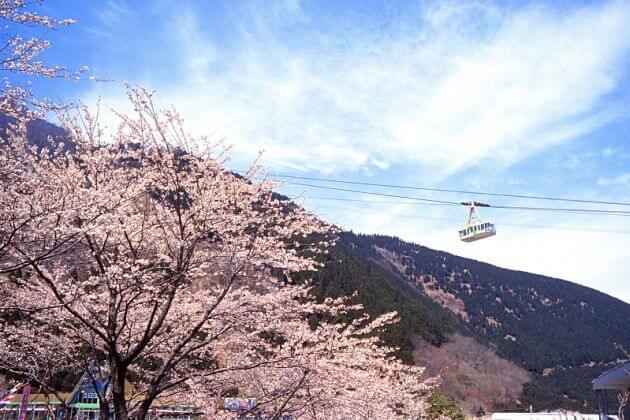 Beppu-Ropeway-Beppu-shore-excursions