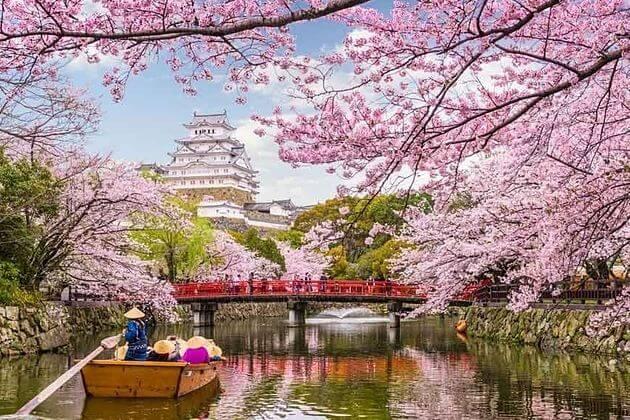 Spring-Japan-day-tours