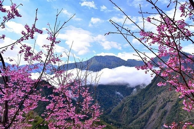 Spring-in-Taiwan-shore-excursions