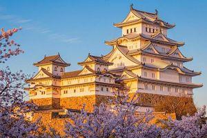Kobe Osaka Westerdam Cruise Oct 2019