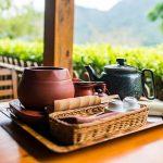 Tea Experience Taipei shore excursions