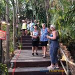 Phuket Shore Excursions Feedback