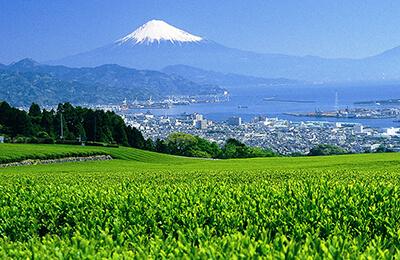 Nihon-daira Ropeway Oceania Cruise