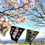 Hakodate Excursion