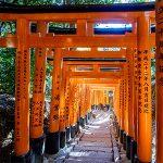 Nara City Tour Kobe Shore Excursions