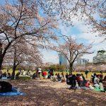 Osaka Castle Kobe Shore Excursions