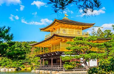 Kinkakuji Temple Asia Shore Excursions